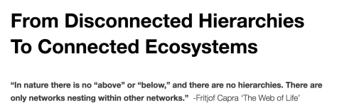 From DCluberhouse, https://dculberh.wordpress.com/2014/11/01/from-disconnected-hierarchies-to-connected-ecosystems/